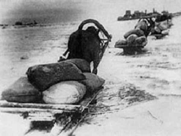 Блокадный Ленинград - фото дорога жизни